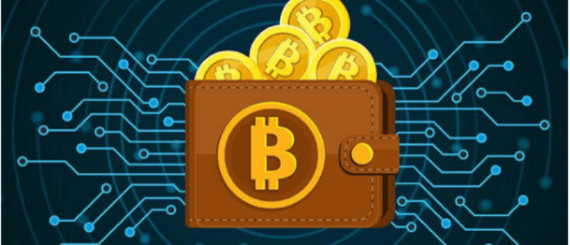 Best wallet to store cryptocurrency
